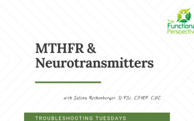 Troubleshooting Tuesdays – Delving into MTHFR and Neurotransmitters